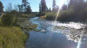 River in Montana